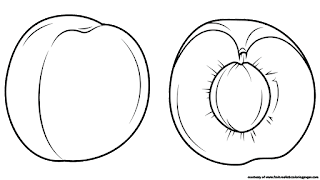 apricot coloring pages