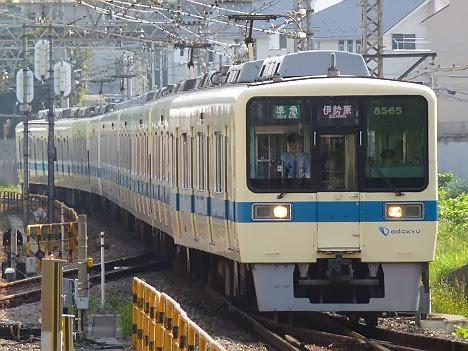 小田急線 準急 伊勢原行き 8000形(平日1本運行)