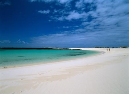 LA FOTO DEL DIA The Canary Island of Fuerteventura 1