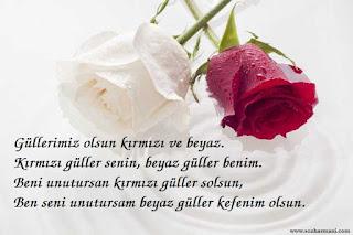 kırmızı beyaz güller, kırmızı balık şarkısı, kırmızı ton, aşkın renkleri, aşkın ritmi,