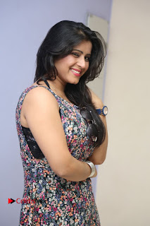 Actress Manisha Tagore Pictures at Hyderabad Love Story Platinum Disc Function  0070.JPG