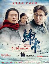 Gui lai (Regreso a casa) (2014) [Vose]