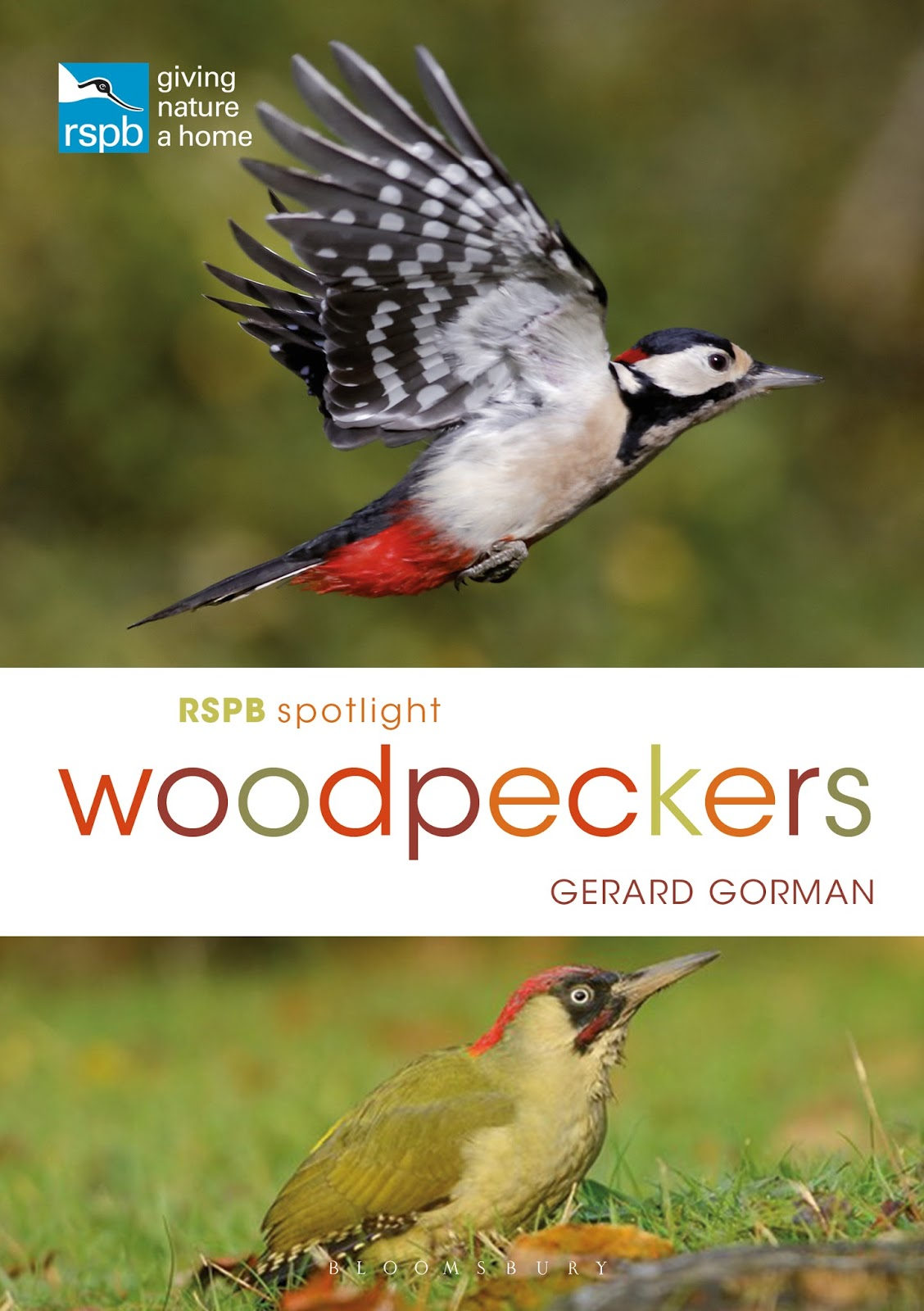 Spotlight Woodpeckers