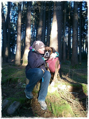 Boxer Amy und ich im Wald