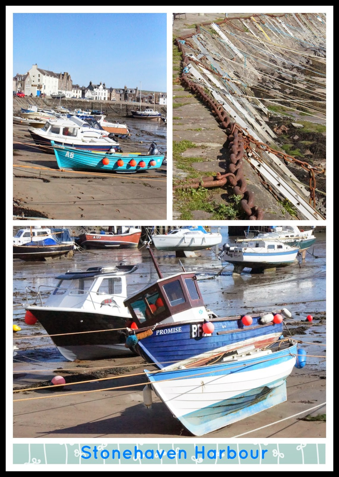 Stonehaven harbour collage - 'growourown.blogspot.com' ~ An allotment blog