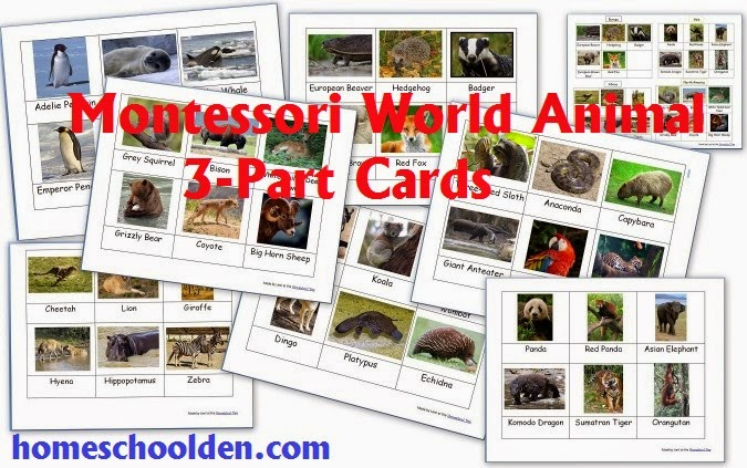 World Animal Cards