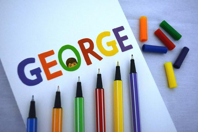Resenha Livro George