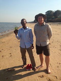 The shores of Lake Malawi.