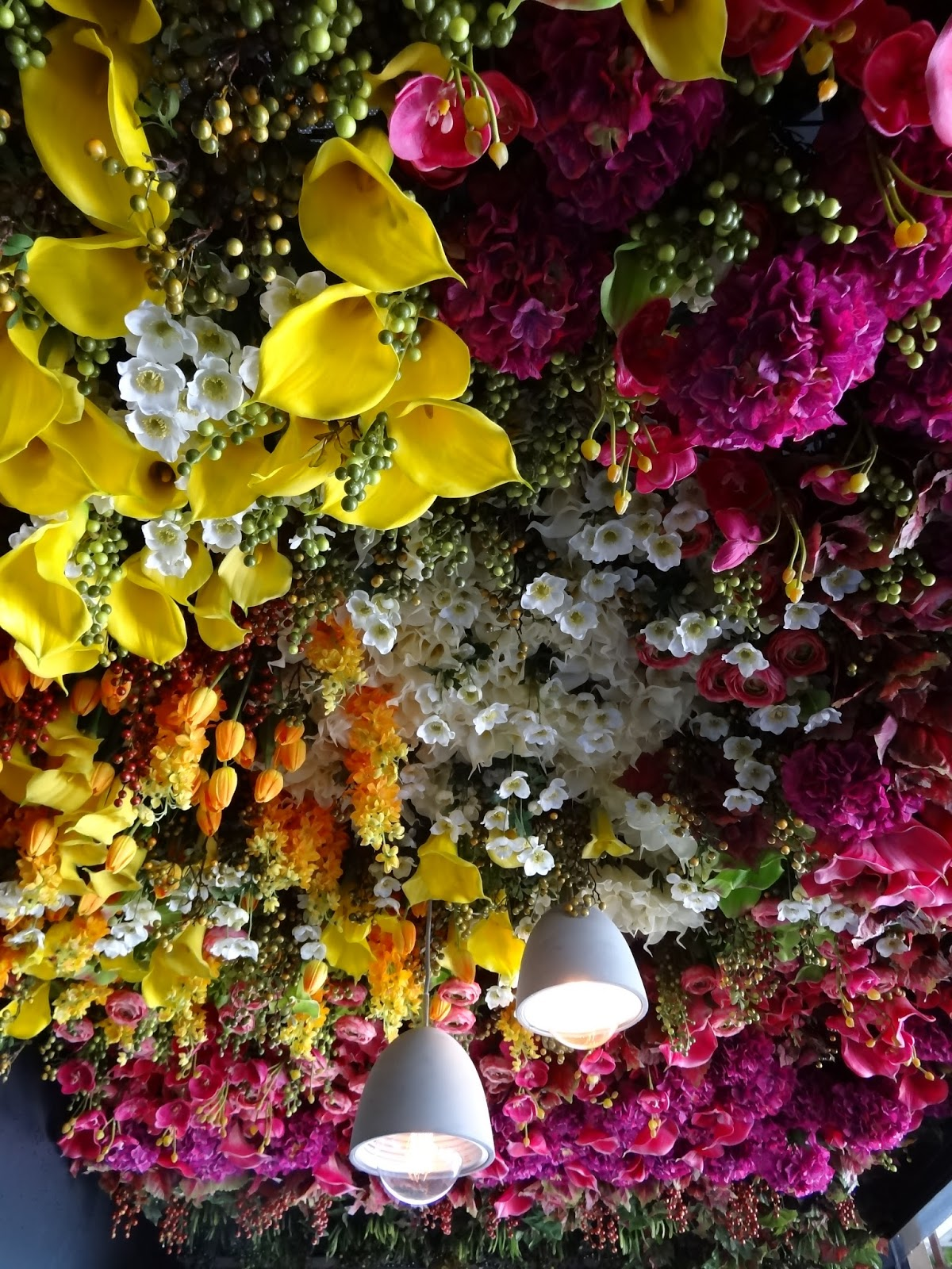 juice bureau, juice, cold pressed juice, adelaide, norwood, detox, cleanse, fruit, vegetable, organic, local produce, flower ceiling