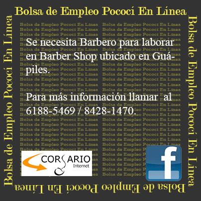 Bolsa de empleo pococ en l nea gu piles barbero for Ofertas de empleo en la linea