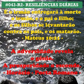 043-R2- RESILIÊNCIA 2