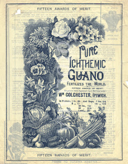 what is guano?, gardening