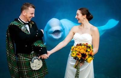 Una sonriente beluga acompaña a esta pareja.