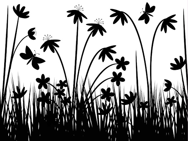 Black And White Design Wallpaper  Hd Wallpapers In Vector