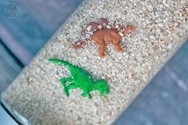 dinosaur sensory bottles for toddlers