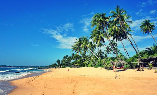 Jakie plaże wybrać na Sri Lance?