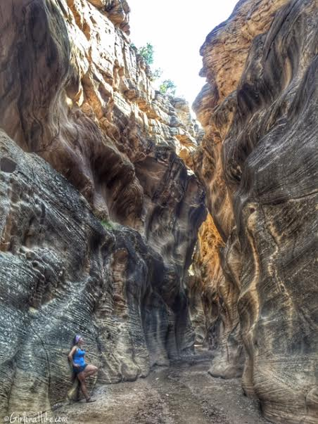 Hiking Willis Creek Slot Canyon, Hiking in Utah with Dogs