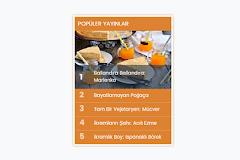 Blog Popüler Yayınlar Yeni Widget Tasarımı