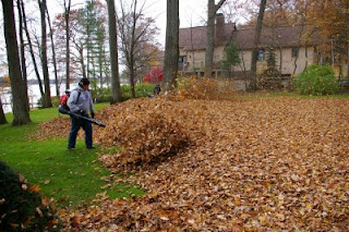 fall leaf cleanup