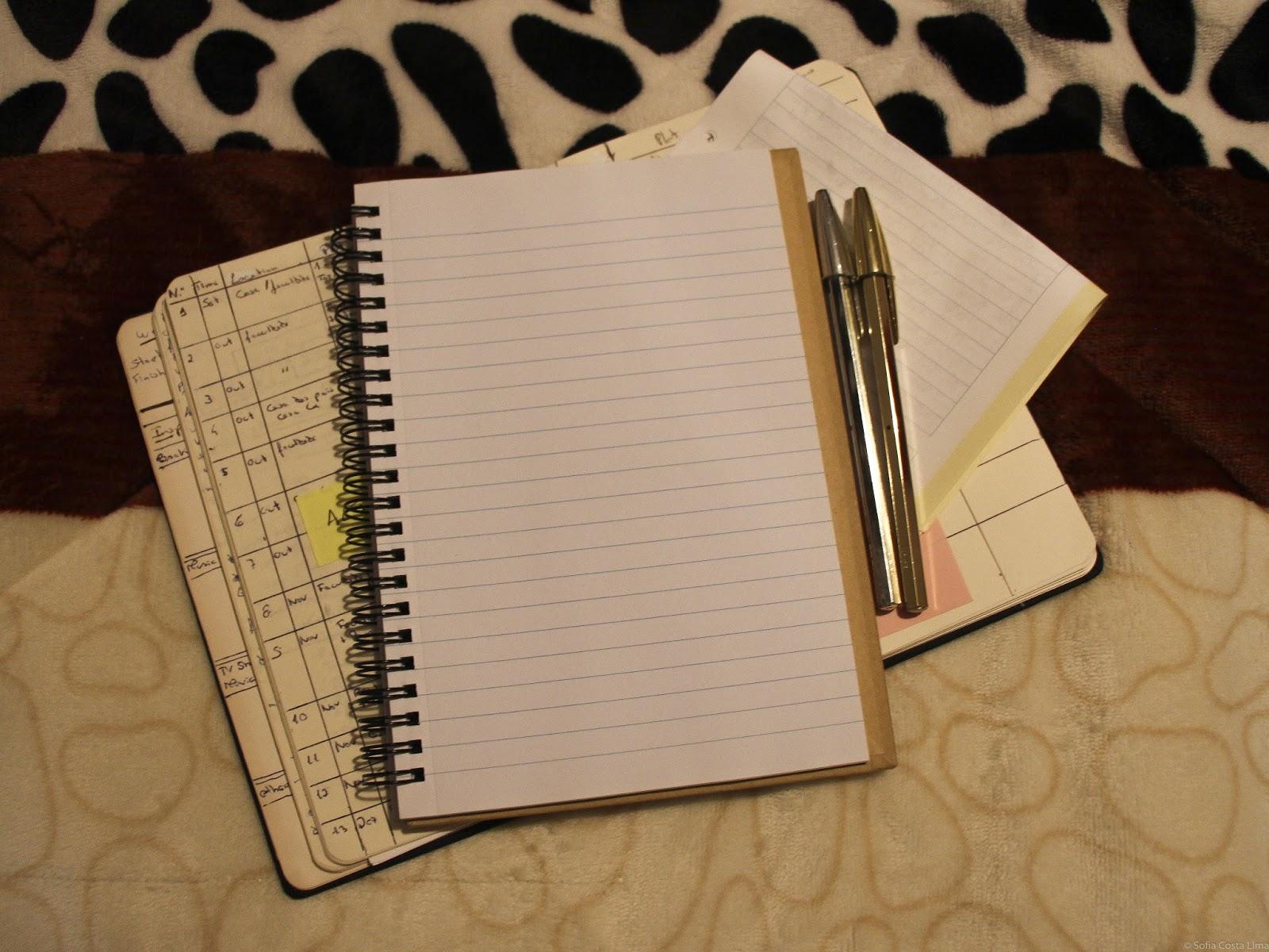 Diário de Escrita: É tudo ficção?