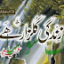 Zindagi Gulzaar he Novel by Umera Ahmad Read Online pdf