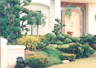 Galeri Taman - Tukang Taman Surabaya 21