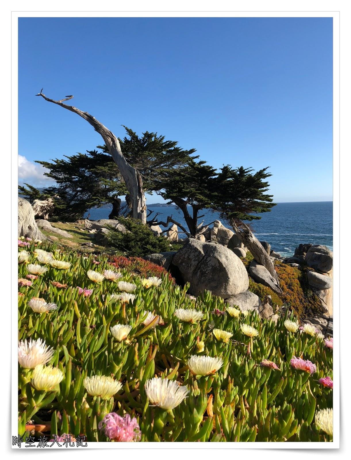 Monterey 17 miles drive 遊記