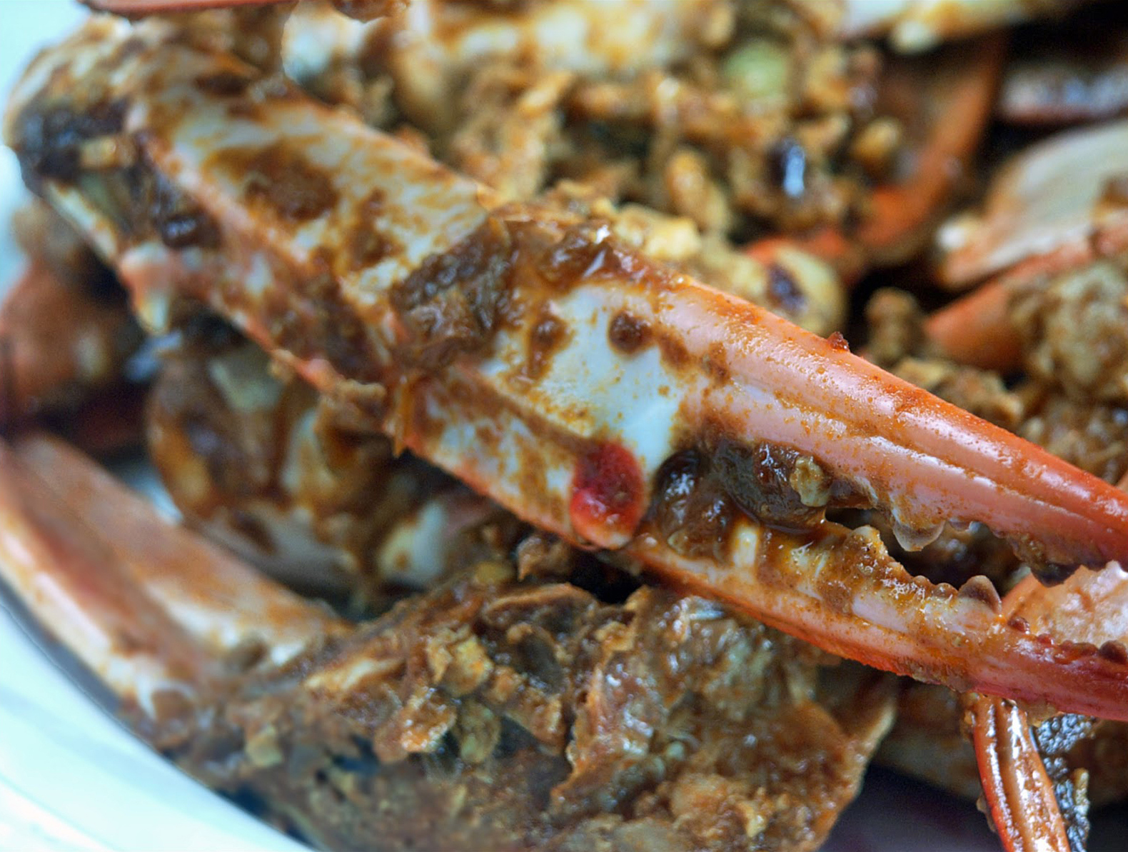 flower crab curry