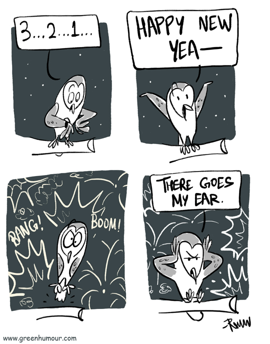 Green Humour: Firecrackers on New Year\'s Eve