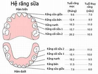 Khi nào nên nhổ răng sữa cho trẻ