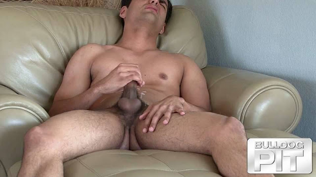 Bull Dog Pit - Ean