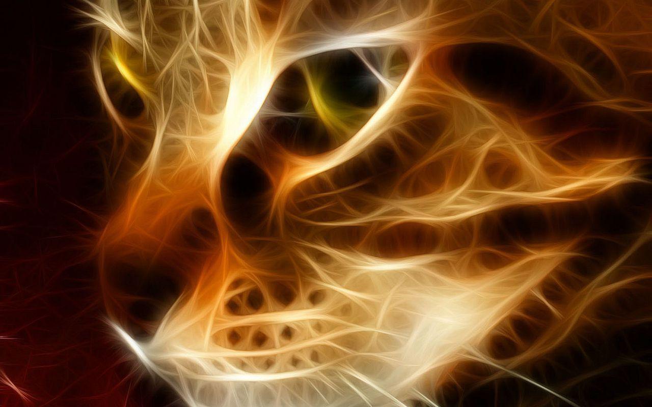 Klucznik Kot Symbolika Lodołamacze