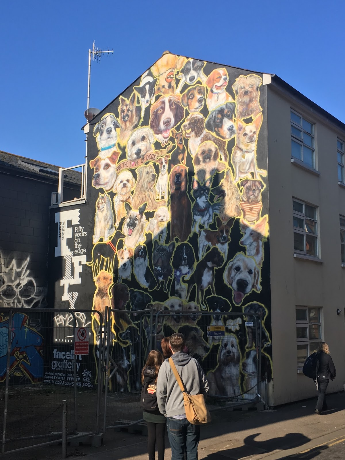 Dog Wall Painting in Brighton