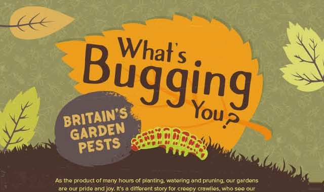 Your Garden Pests, Sorted