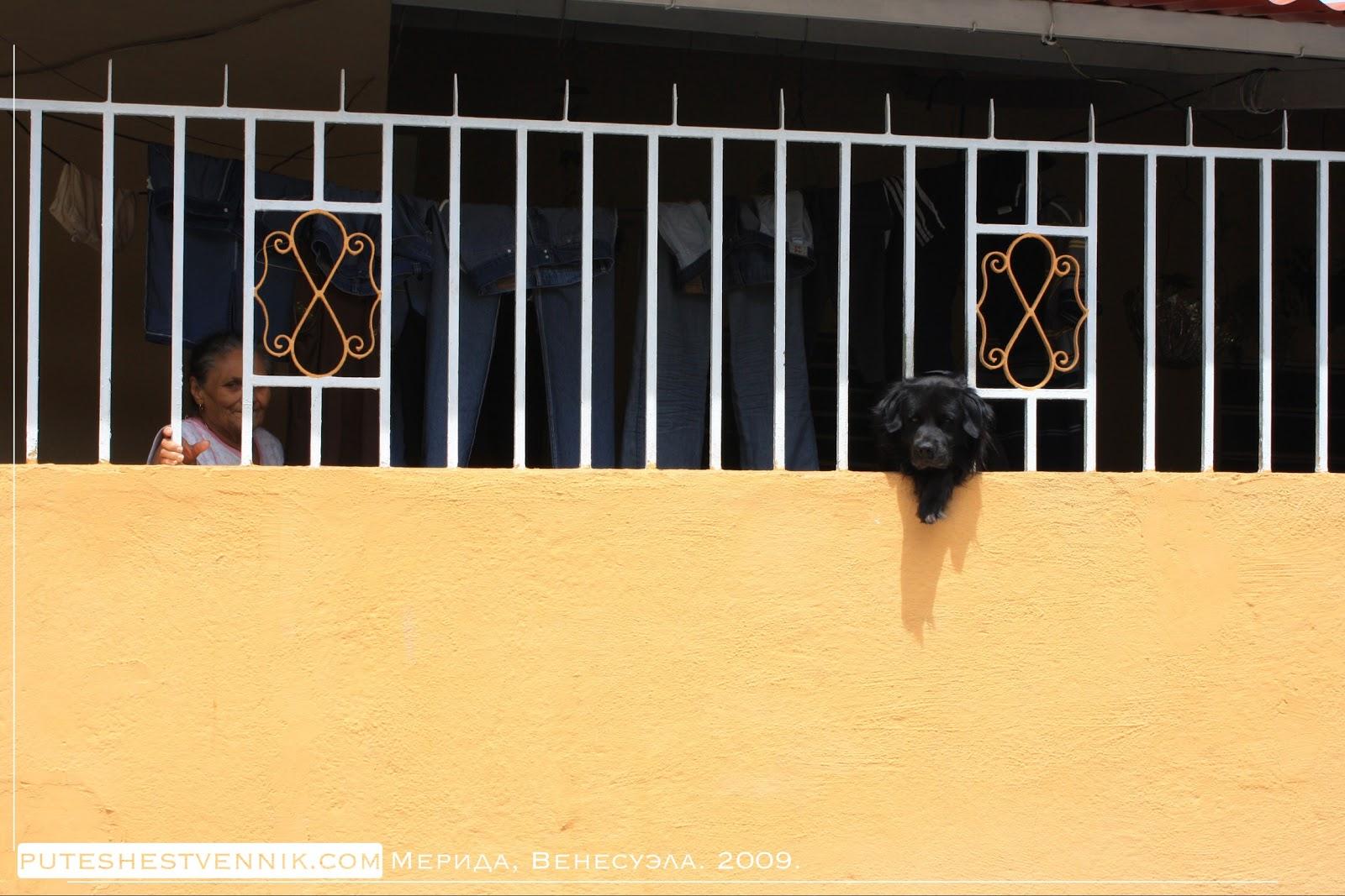 Жители Мериды на балконе