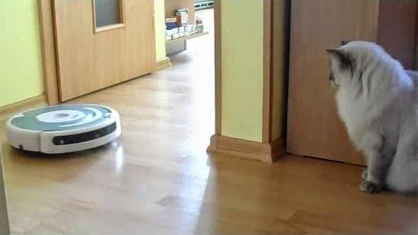 Робот-пылесос для уборки шерсти