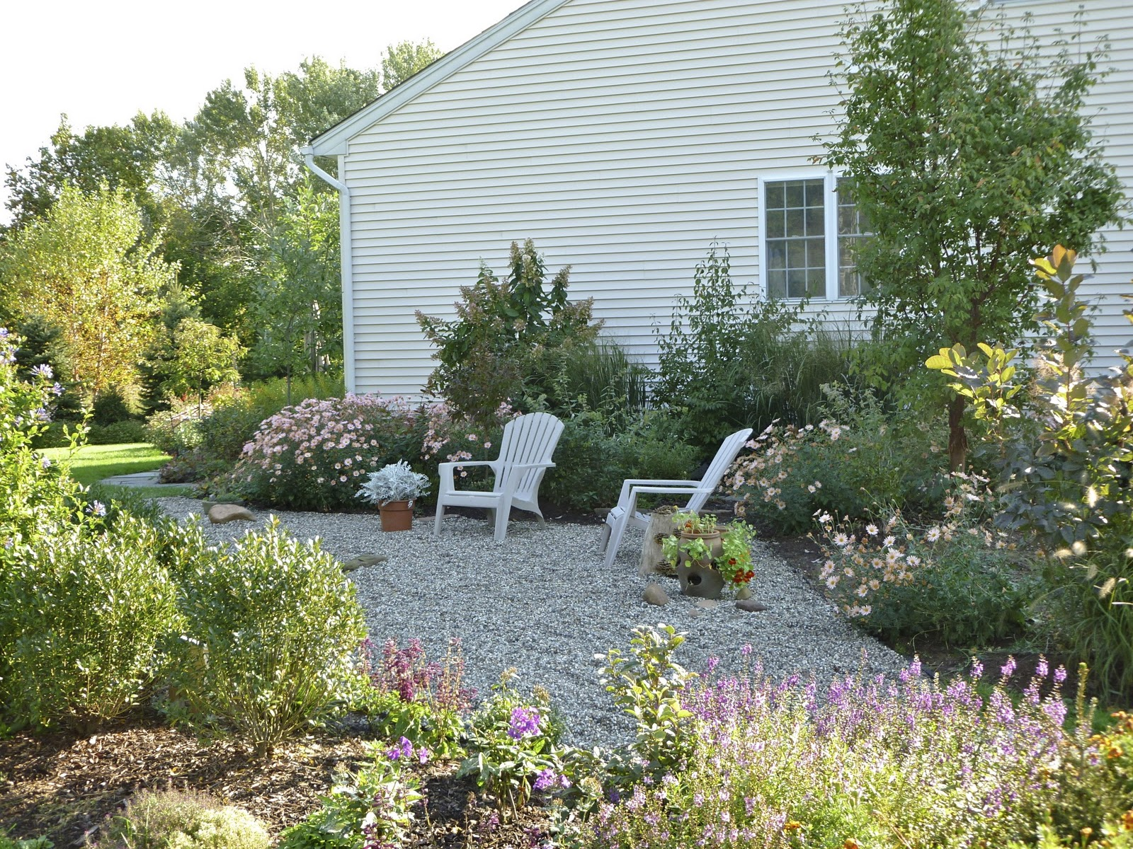 Plant Inventory At 20 Timothy : Gravel Garden
