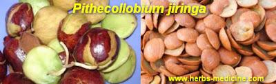 Herbalife use Pithecollobium Jiringa