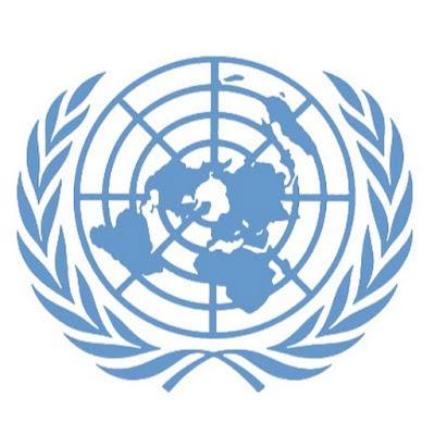 هيئة الأمم المتحدة بحث
