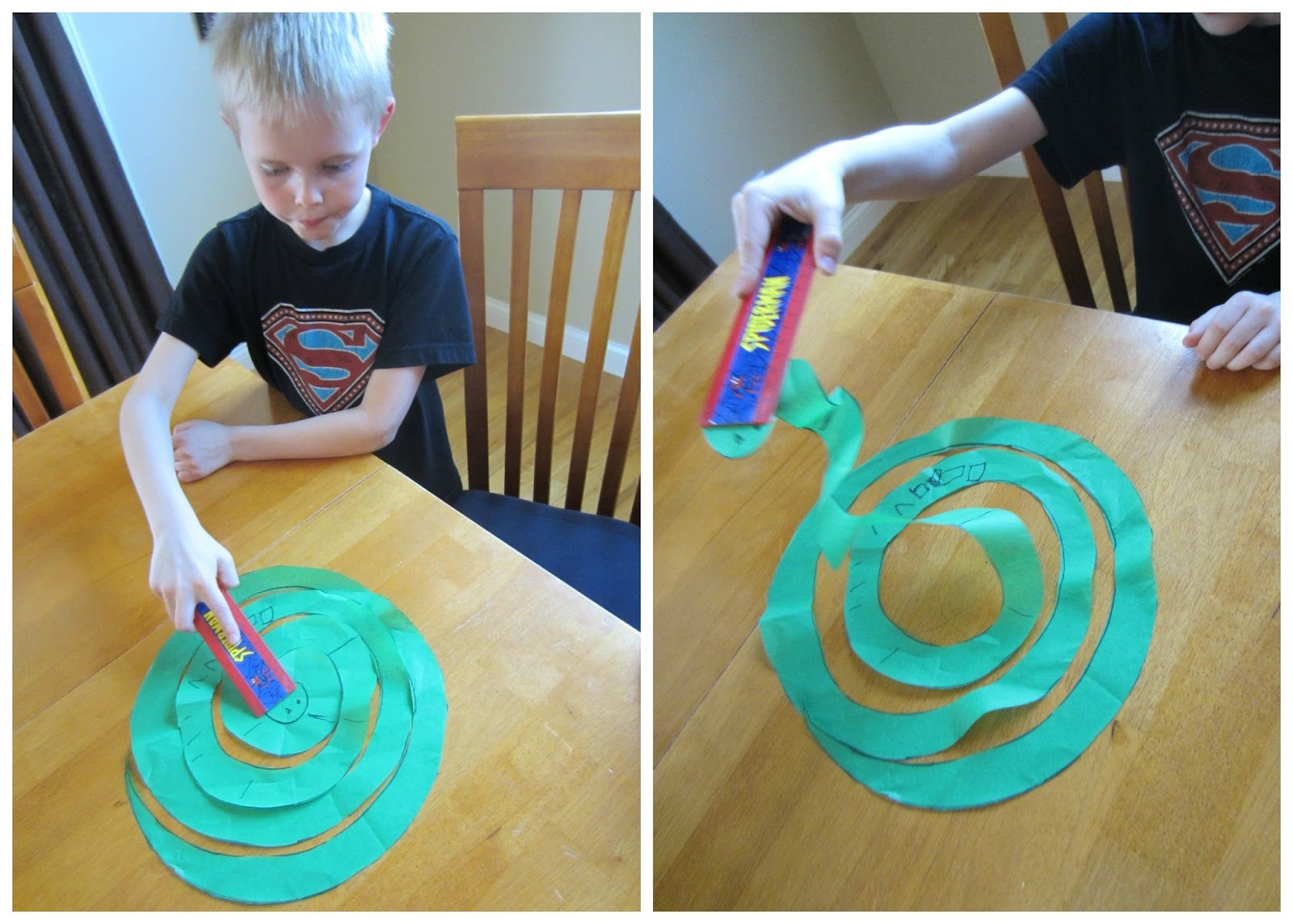 Relentlessly Fun Deceptively Educational One Very Charming Snake A Static Electricity Experiment