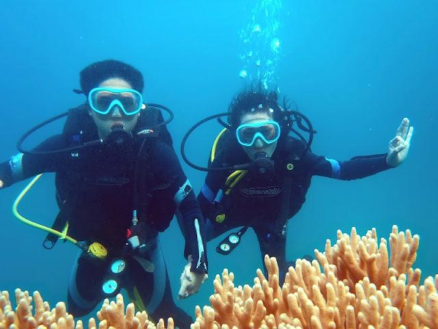 10 hot Honeymoon tour destinations in Vietnam 9
