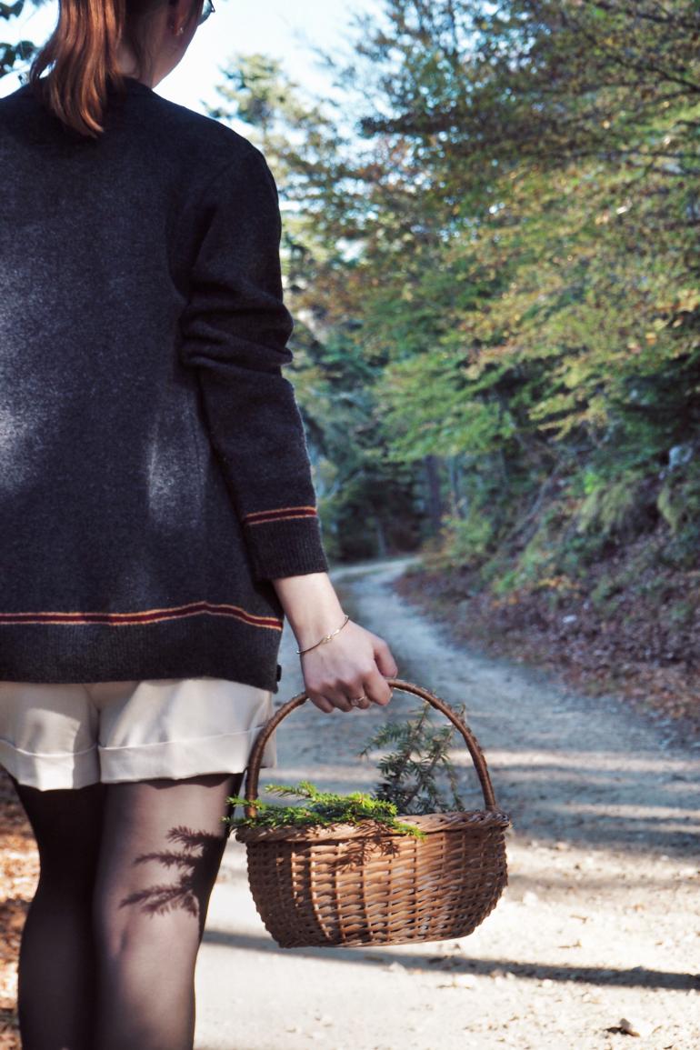 Promenade et cueillette en forêt en automne - cardigan Gryffondor
