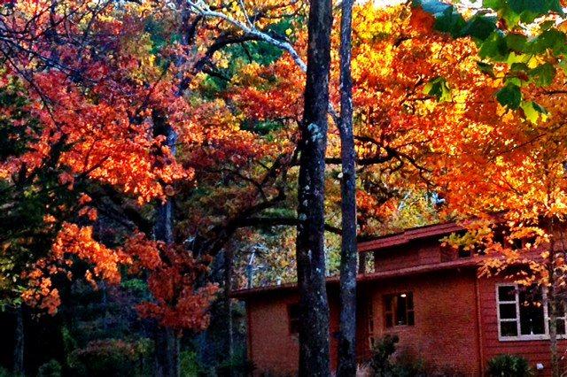 Arkansas My Happy Place