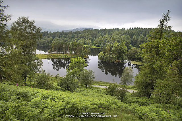Tarn hows, best, walk, route, map, Lake District, lakes, Beatrix Potter, national trust, Glen Mary