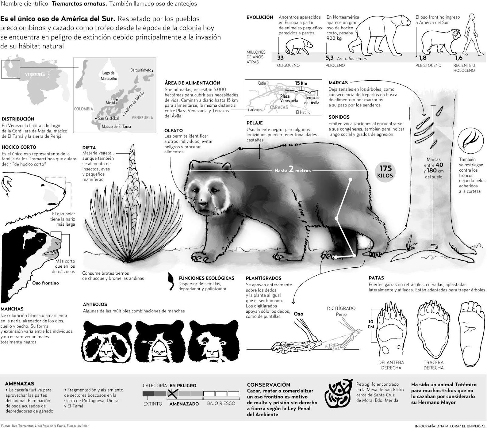 Protección de la Fauna y Flora de Venezuela: Animales en Peligro de ...