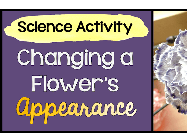 Changing a Flower's Appearance: Activity