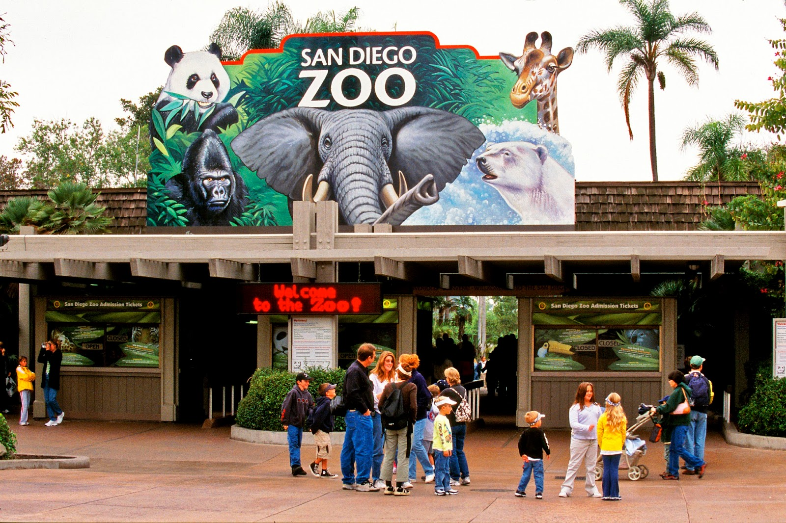 Zoo Dr San Diego Zoo San Diego, CA () The Zoo store really is amazing. Such unique and timeless gifts and keepsakes. From goofy animal themed kitchen utensils to hand crafted art, you will surely find something for everyone here.4/4(6).