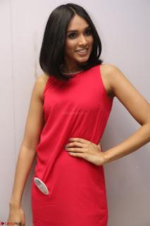 Spatika Surapaneni in Red Tight Dress at FBB Miss India 2017 finalists at Telangana auditions Feb 2017 (48).JPG