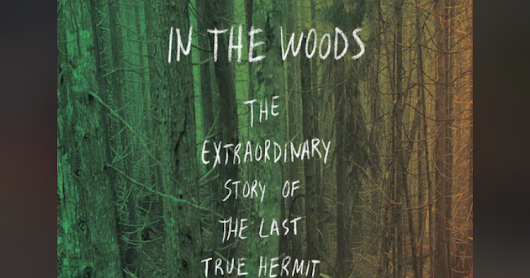The Stranger in the Woods- Book Review