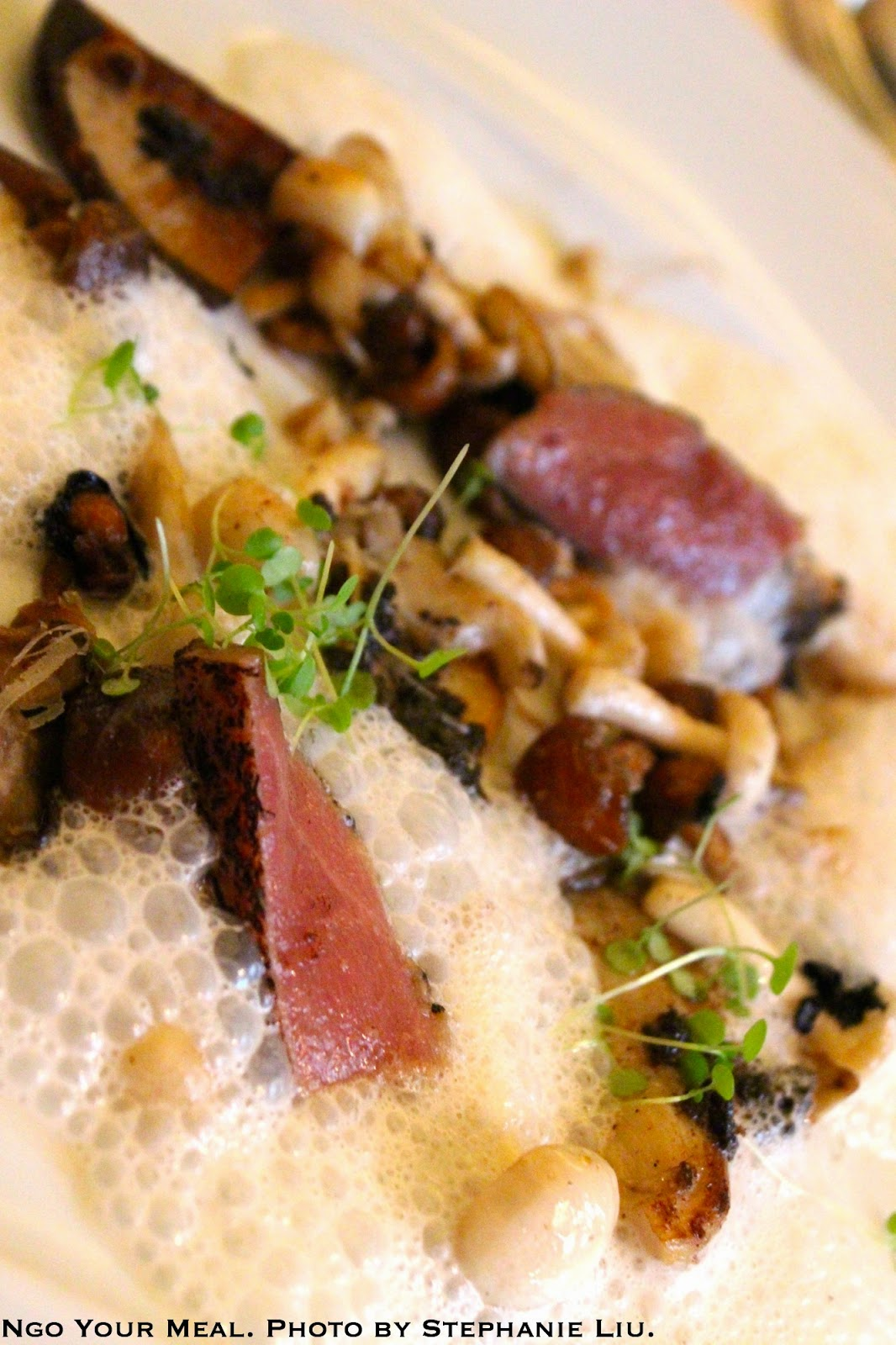 Forager's Treasure of Wild Mushrooms: Sweet Garlic, Special Spices, Grilled Toro Black Truffle Dressing at Bouley